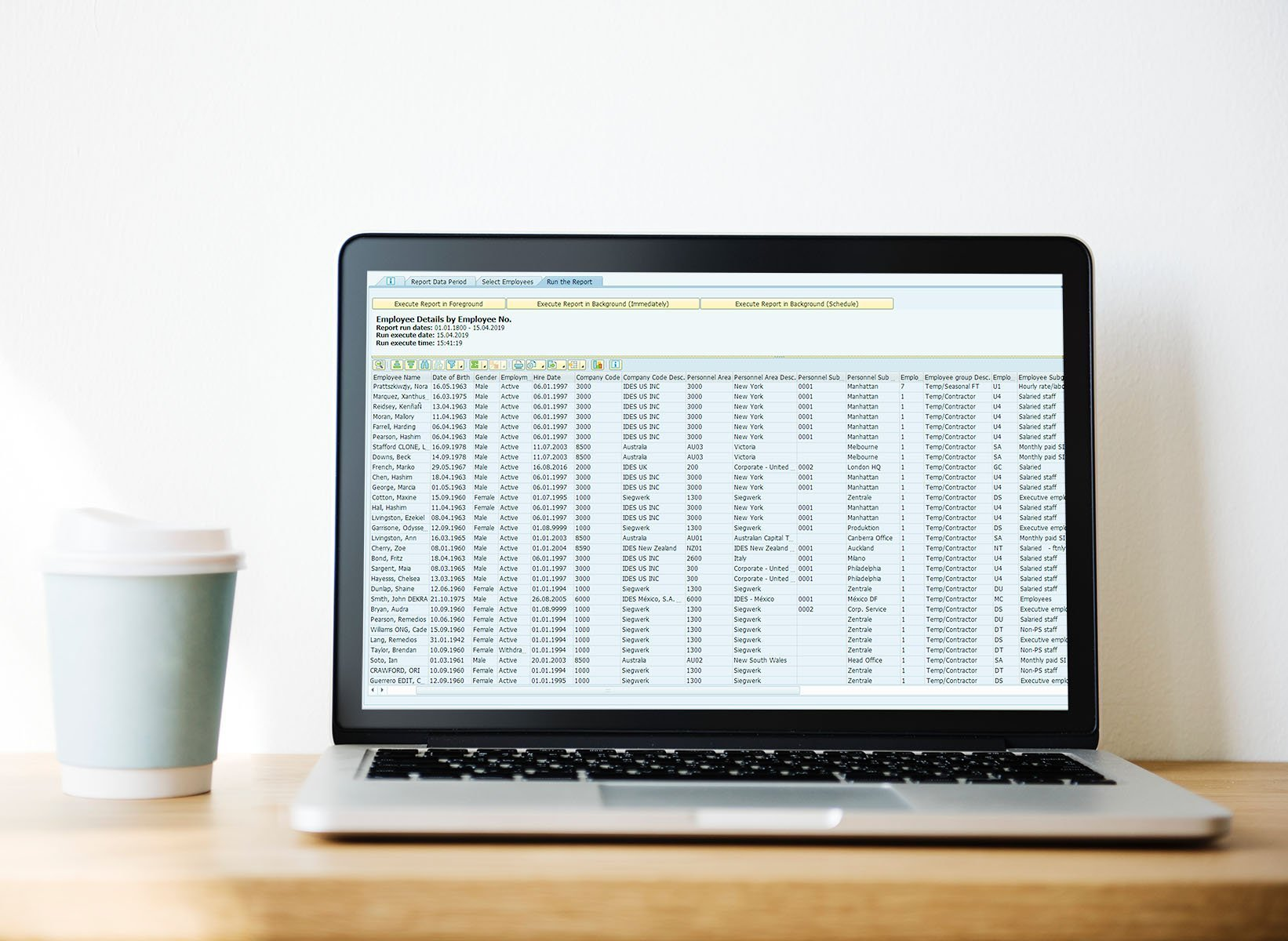 Easy Reporter SAP Payroll Report - Employee details