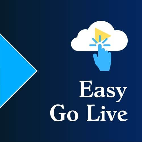 SpinifexIT-Easy-Go-Live-2020-logo